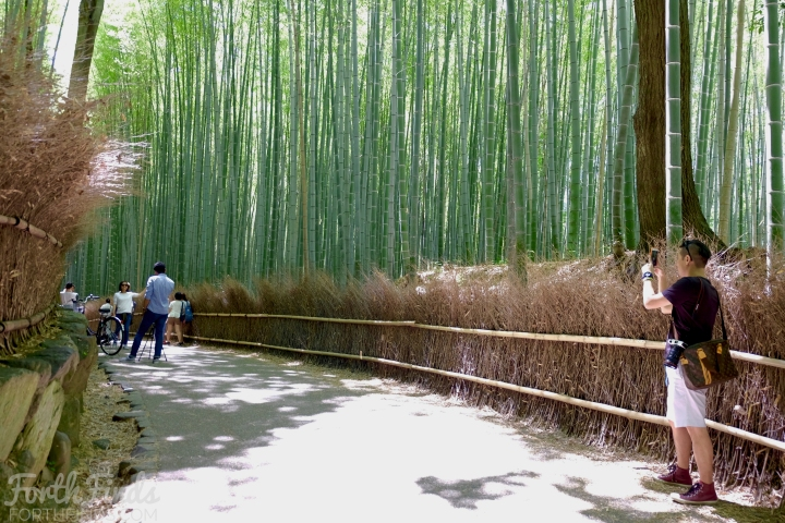 Arashiyama-picture-taking.jpg